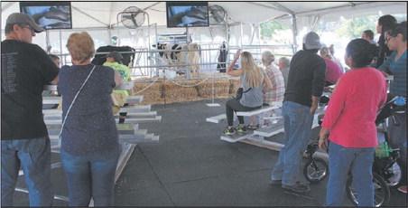 All About The Fond du Lac Fair