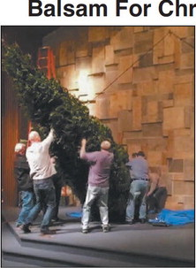 Our Savior's Lutheran  Church Sets Up 22-Foot  Balsam For Christmas