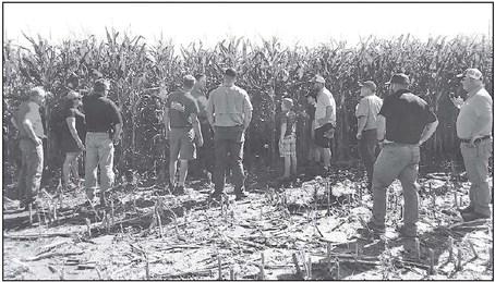 Sheboygan River Progressive Farmers Group  Digs Into Interseeding At Field Day